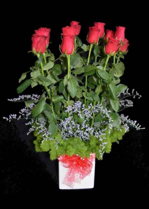 12 Premium Red Roses Arranged
